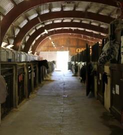 les écuries equestre