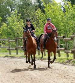 piste de galop club equestre de castres