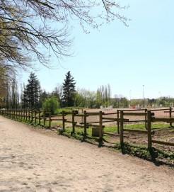 la piste de galop du centre equestre de castres