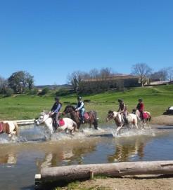 stage enfant cheval poneys