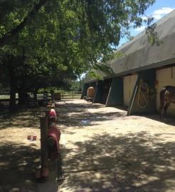 les douches chevaux du centre equestre