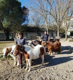 sortie des poneys avec sandra et william