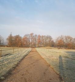 un matin hivernal